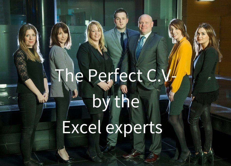 The Perfect C.V- by the Excel experts